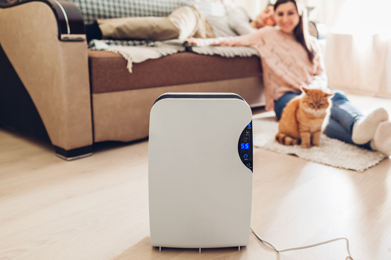 CleanAir Solutions Provides Whole Home Humidifiers In Hamilton.