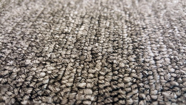 carpet hidden home toxin