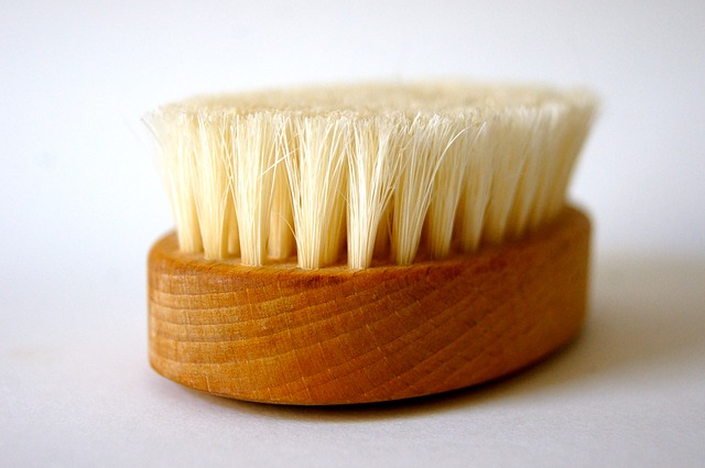 spring cleaning brush
